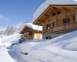 Aux Chalets des Alpes, Piscine chauffée (été) Piste de luge (hiver)