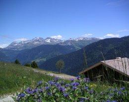 Authentique chalet d'alpage à 500m des pistes