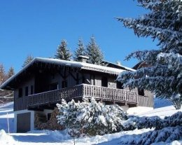 superbe chalet traditionnel l'Hermine